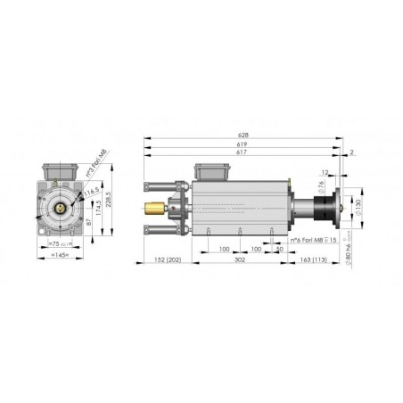 Silnik 3-fazowy dwubiegowy VEM